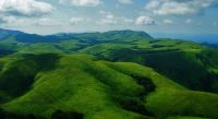 coorg2